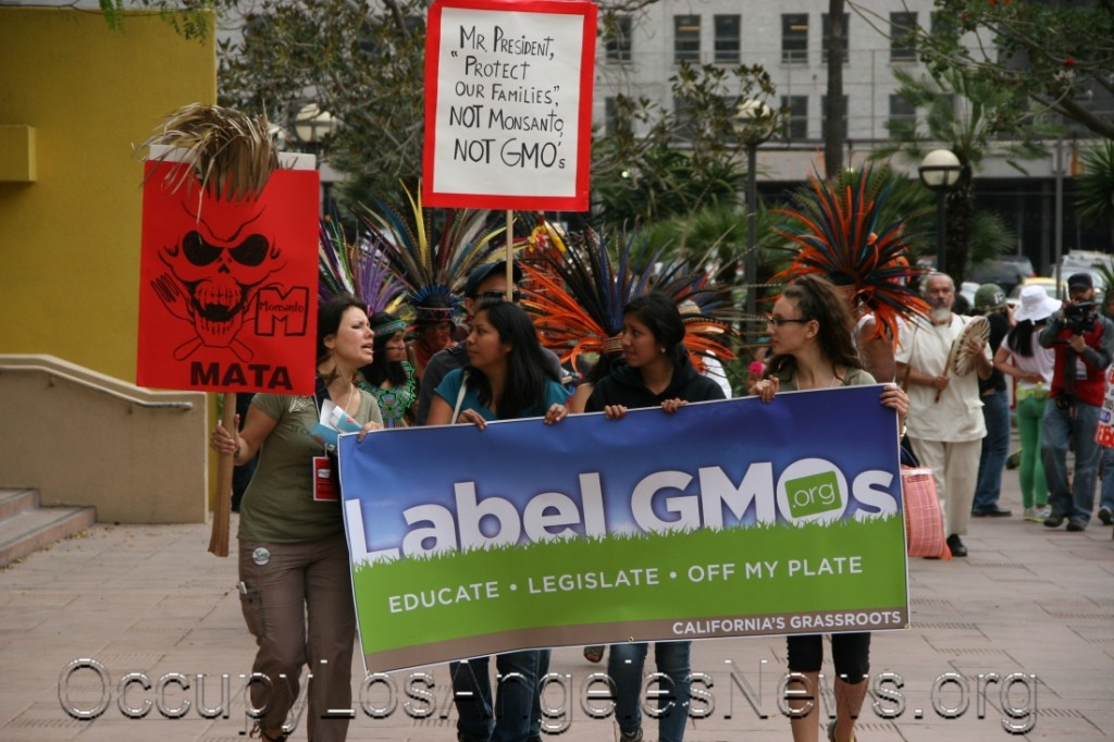 March Against Monsanto March May 25, 2013