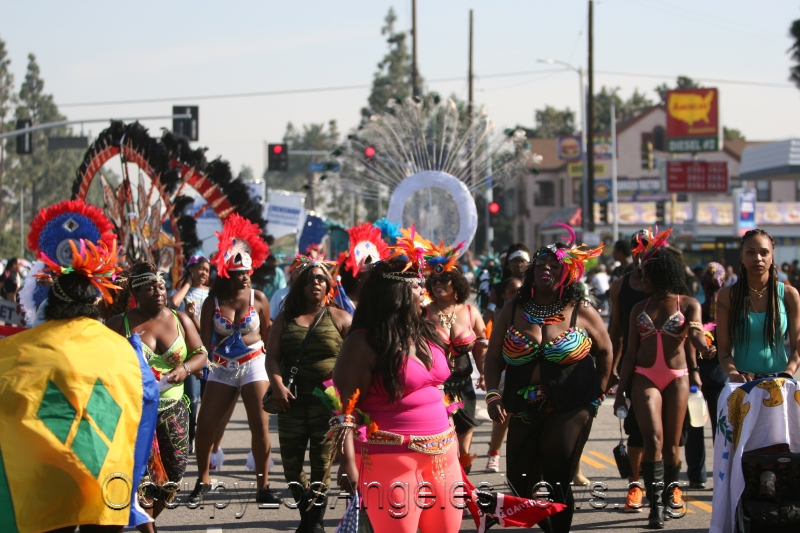 Many colorful costumes were on display in the 30th annual Martin Luther King parade in Los Angeles 2015.